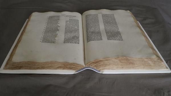 Dante Open Book